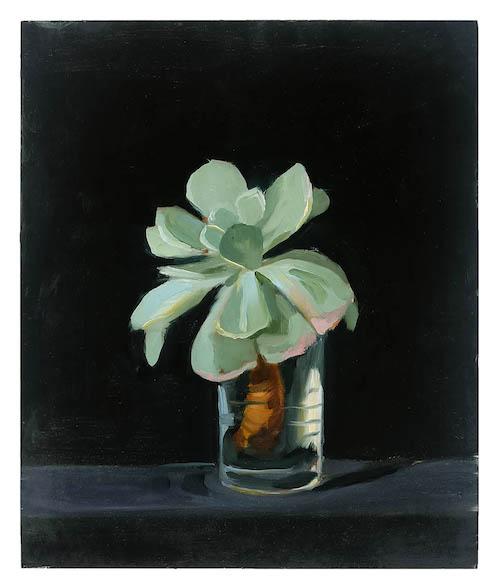cactusrose copy