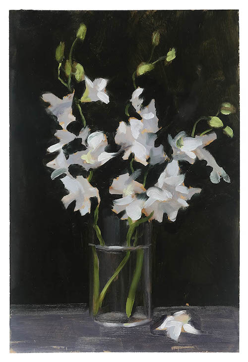 whiteorchid copy